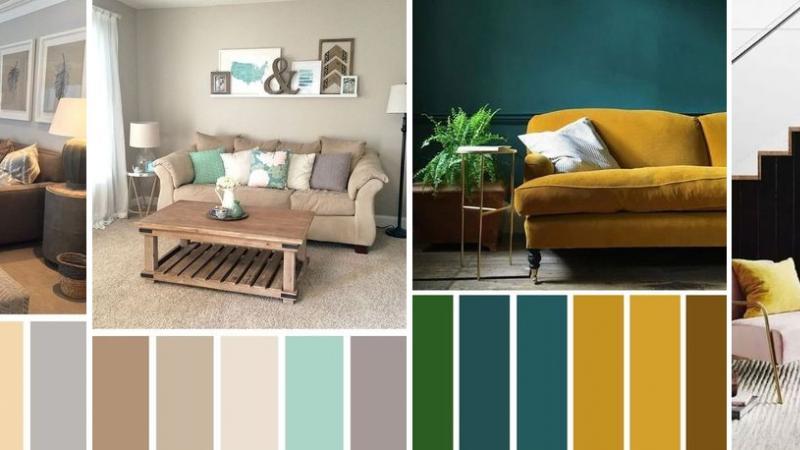 Как да изберем цветовете у дома?